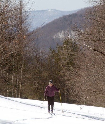 Cross country skiing at Sweet Retreat Guesthouse &
